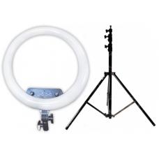 Набор: Кольцевая светодиодная лампа с 3-мя держателями M14 (35 см) LED Soft Ring Light + Штатив 210 см. (white)